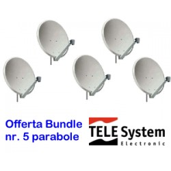 bundle nr° 5 parab.60 cm o/s acciaio bianca Telesystem